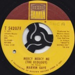 Marvin_Gaye-Mercy_Mercy_Me-Reverend_P_Edit